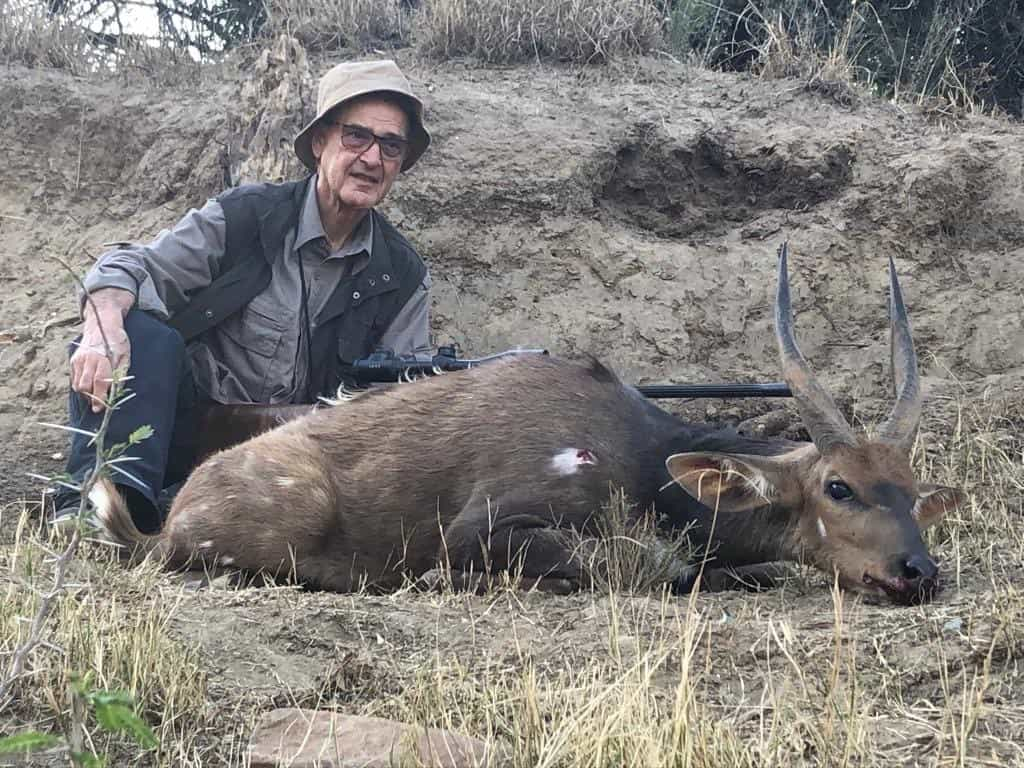 Bushbuck shot while hunting in africa.