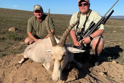 Blesbok is included in our cull hunting packages.