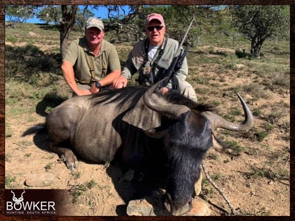 Blue Wildebeest trophy shot with Nick Bowker Hunting