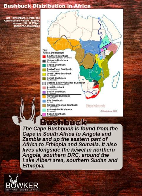 Bushbuck distribution across Africa.