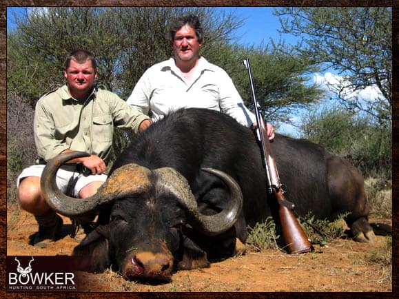 Cape Buffalo trophy shot in the Eastern Cape South Africa