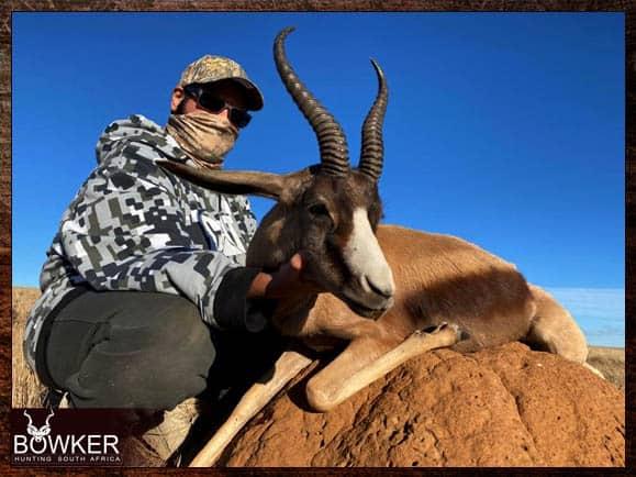 Copper springbok trophy