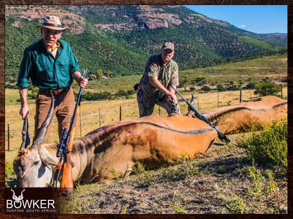 Eland trophies shot in the Eastern cape South Africa