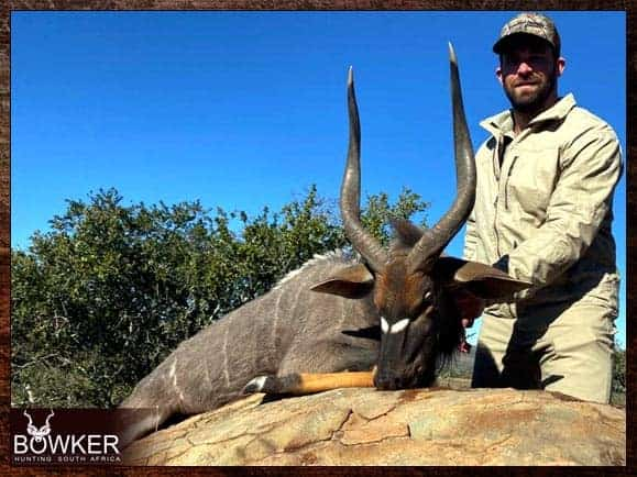 First time Nyala hunt