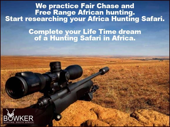 Free range south african hunting with Nick Bowker