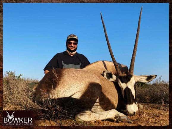 Gemsbok - Big Game Africa hunt package