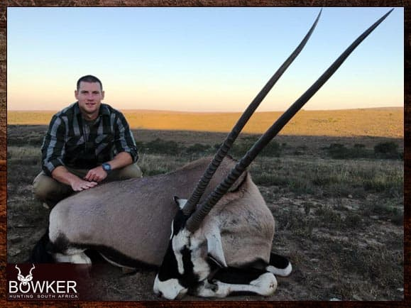 Gemsbok hunted in the Eastern Cape South Africa