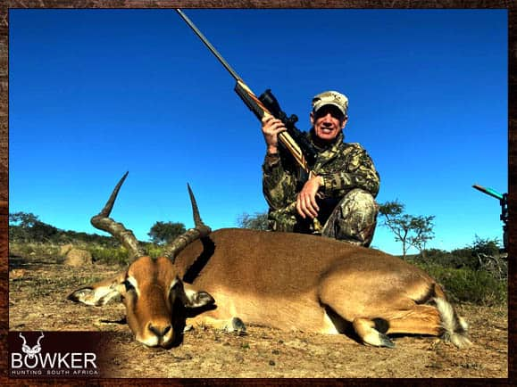 30 animal south african cull hunt