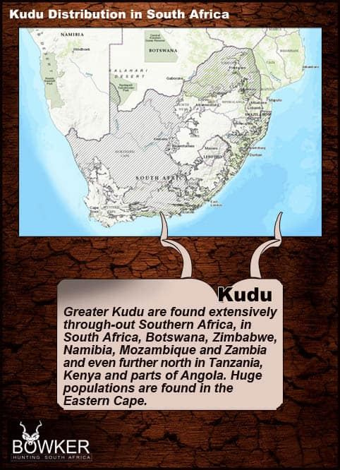 Kudu distribution in South Africa.
