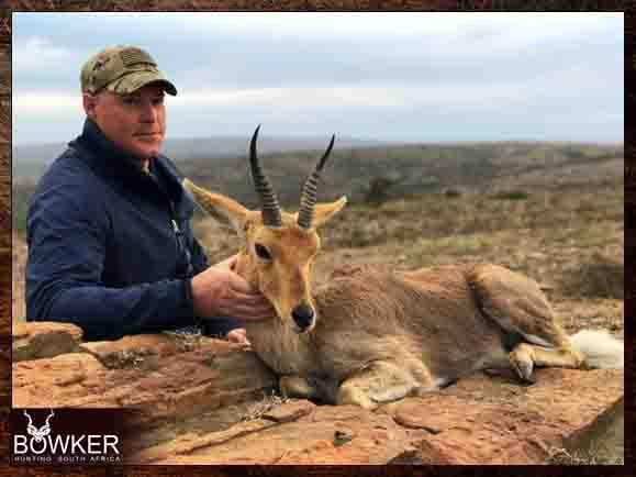 Mountain Reedbuck hunting