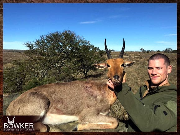 Mountain Reedbuck hunting in South Africa