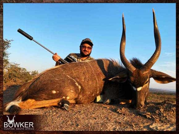 Nyala - Big Game Africa hunt package