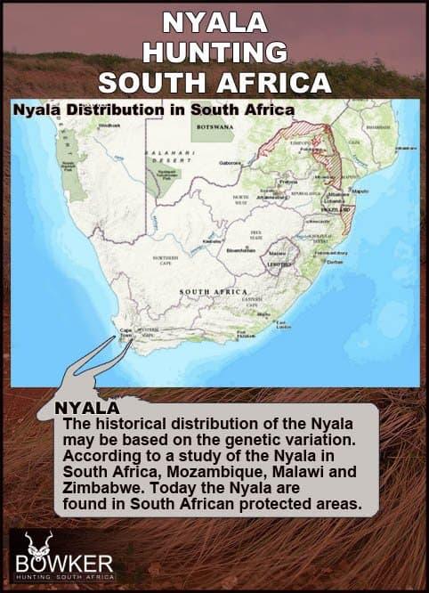 Nyala distribution in South Africa.