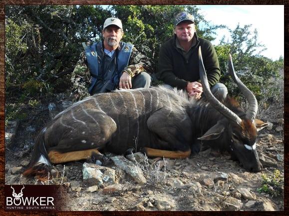 Nyala hunting in South Africa.