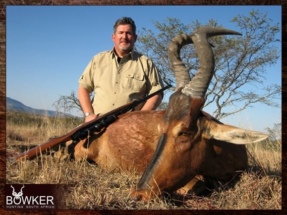 Red Hartebeest trophy hunting