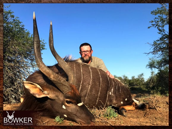 Nyala trophy hunted with Nick Bowker off African Quad shooting sticks.