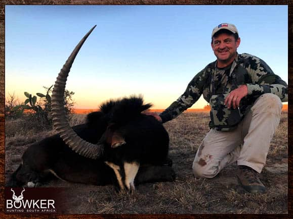 Sable trophy shot with Nick Bowker Hunting.