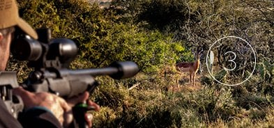 Hunting with three-legged shooting sticks is universal in Africa. T