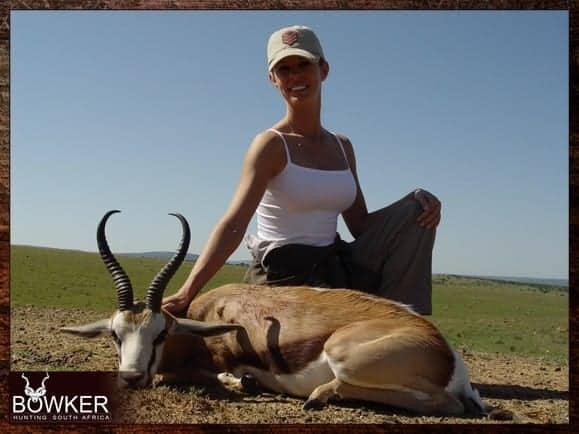 Springbok hunting in South Africa