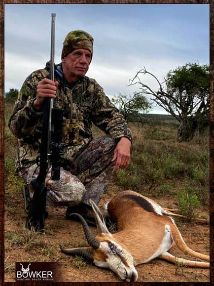 Springbok South African cull hunt