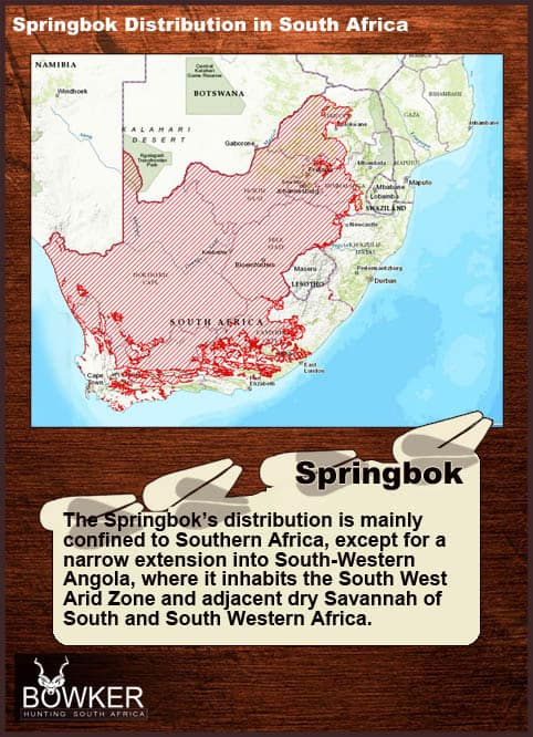 Distribution in South Africa.