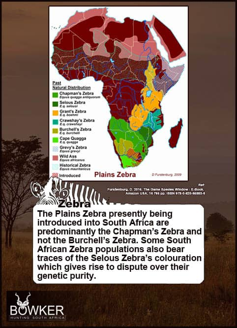 Distribution across Africa.
