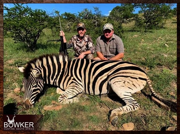 Zebra hunt with Nick Bowker hunting