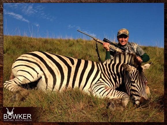 Zebra Hunting in South Africa.